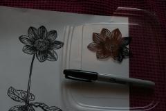dahlia-drawing.jpg